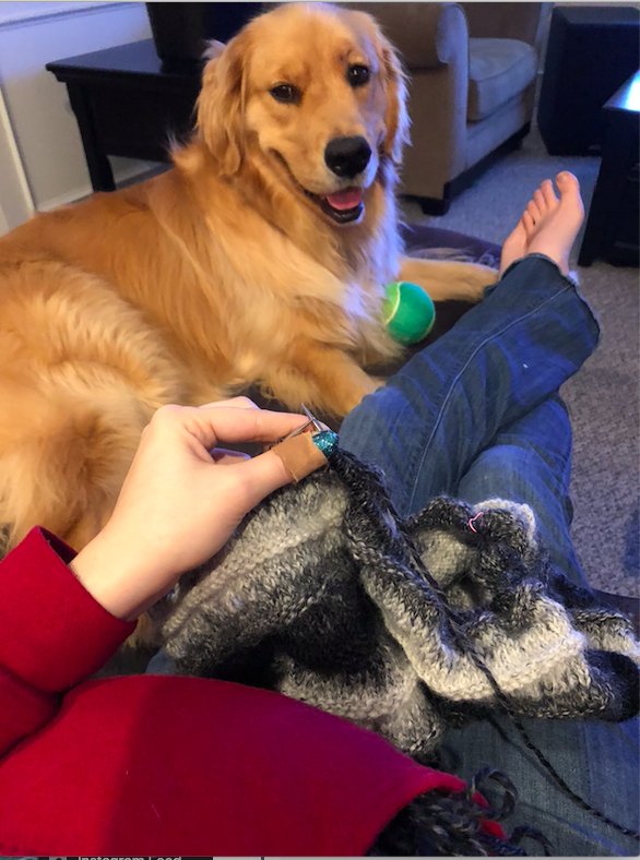 Knitting Together
